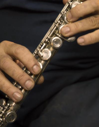Luthiers - Flauta traversa